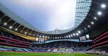 Wales consider two Premier League grounds for autumn home games