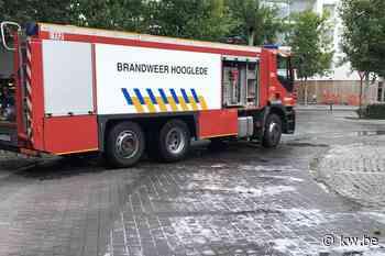 Lekkende lijnbus veroorzaakt kilometerslang oliespoor in Roeselare
