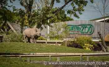 Burnley man arrested over theft of car parts at Chester Zoo