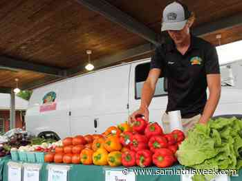 Petrolia Farmers' Market adjusts to COVID-19 - Sarnia and Lambton County This Week