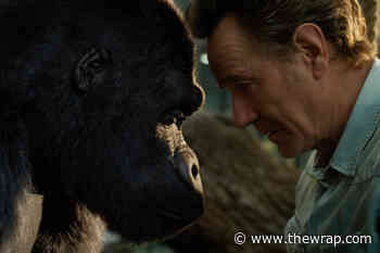 Bryan Cranston's Best Friend Is a Very Artistic Gorilla in Trailer for Disney+ Movie 'The One and Only Ivan' (Video) - TheWrap