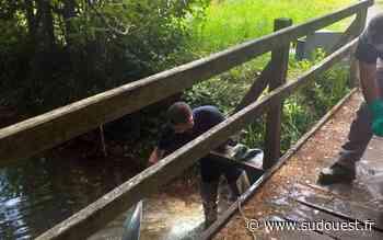 Jonzac : histoire d'eaux pluviales, d'eaux usées et de fioul - Sud Ouest