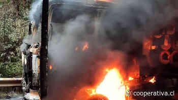 Seis camiones fueron quemados en un predio forestal en Mulchén