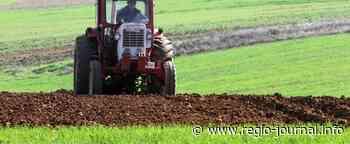 Bauern verlangen Infrastruktur für Bewässerung | Aktuelle Nachrichten | - Regio-Journal