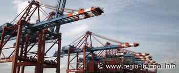 Metall-Arbeitgeber: Lieferkettengesetz völlig aus der Zeit gefallen - Regio-Journal