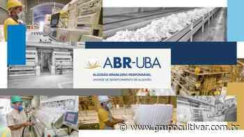 Abrapa lança Programa Algodão Brasileiro Responsável para as UBA - Grupo Cultivar