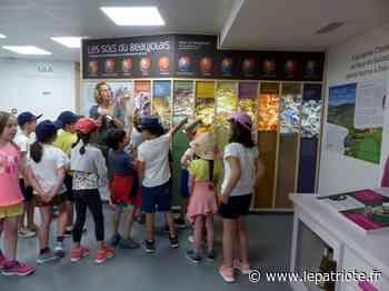 Beaujeu : un atelier enfants pour découvrir les mystères de la géologie du Beaujolais - Le Patriote