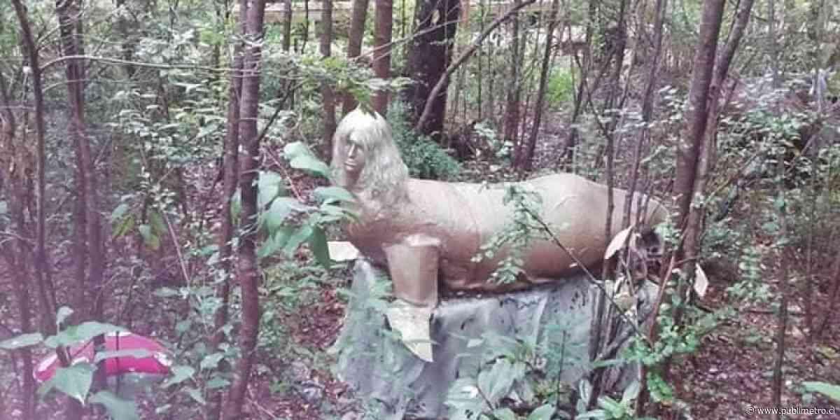 Parque con estatuas de héroes y figuras mitológicas de Pucón genera debate en Twitter: dicen que es feo - Publimetro Chile