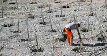 """Bau-Holz-Gewerkschafter warnt: """"2021 erwarten wir die nächste Krise"""" - Tiroler Tageszeitung Online"""