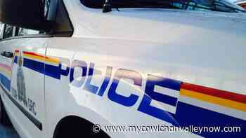 Man Arrested After Incident at Parksville Liquor Store - My Cowichan Valley Now