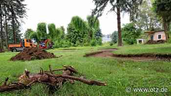 Viele Wege sollen durch kleinen Park in Schleiz führen - Ostthüringer Zeitung