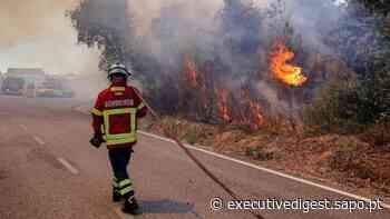 Fardas dos bombeiros queimados em fogos já tinham cerca de seis anos - Diário Digital