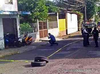 Reportan grave a mujer policia baleada en Paso del Macho - plumas libres