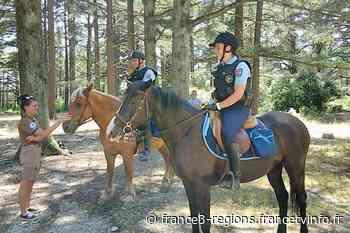 Les gendarmes de Pertuis relancent les patrouilles à cheval dans le parc naturel régional du Luberon - France 3 Régions