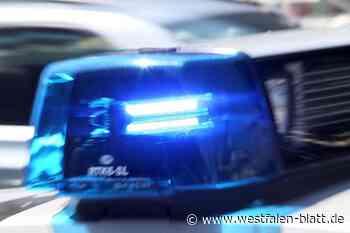 Möchtegern-Einbrecher ist auf der Flucht - Westfalen-Blatt