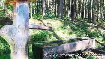 Villingen-Schwenningen: Kein Schmuckstück am Premiumweg - Villingen-Schwenningen - Schwarzwälder Bote
