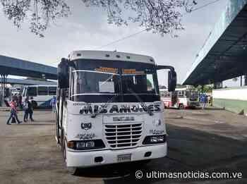Activan rutas comunales desde el Terminal de Maracay - Últimas Noticias