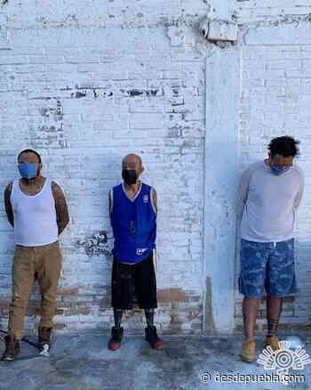 Captura Policía estatal a tres presuntos narcomenudistas en Ajalpan - DesdePuebla