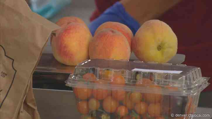 'Pay Whatever You Have': Globeville Farmers Market Opens Doors To Resources
