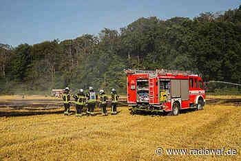Feld brennt bei Telgte - Radio WAF