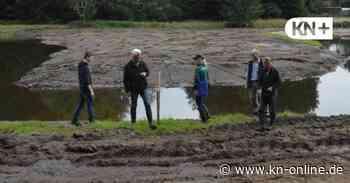 Wie die Schmalfelder Au in bad Bramstedt wieder die Kurve kriegt - Kieler Nachrichten