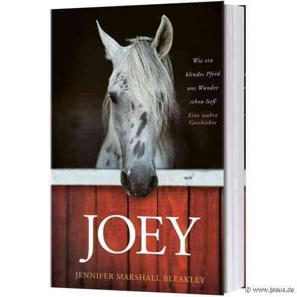 "Jennifer Marshall Bleakley: ""Joey"""