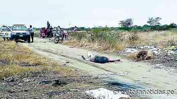 Hombre es asesinado y arrojado en descampado de Zarumilla - exitosanoticias