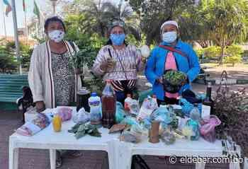 En tiempos de pandemia en San Matías promueven la medicina tradicional - EL DEBER