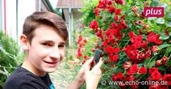 Schüler aus Reichelsheim dreht Kurzfilm zu Corona - Echo Online