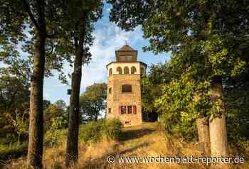 Barbarossa-Radweg und Pfälzer Land-Radweg: Natur auf zwei Rädern erleben - Wochenblatt-Reporter