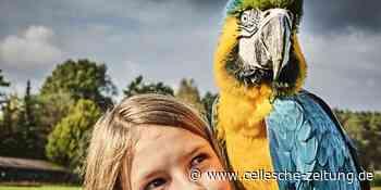 Gewinnen Sie eine Familienkarte für den Weltvogelpark in Walsrode - Cellesche Zeitung