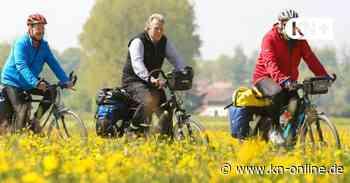 Verein Bürgeraktiv Henstedt-Ulzburg beginnt nach Corona mit den Aktivitäten - Kieler Nachrichten