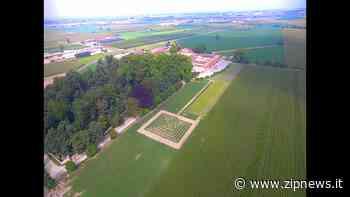 Il labirinto di Tenuta Berroni a Racconigi - Zipnews.it - ZipNews