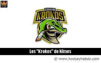 Hockey sur glace : D3 : Nîmes recrute un gardien français - Division 3 : Nimes (Les Krokos) | Hockey Hebdo - hockeyhebdo Toute l'actualité du hockey sur glace