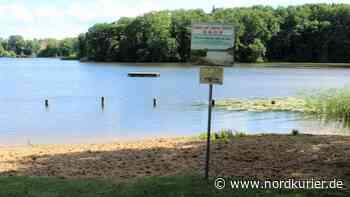 Wasserqualität: Badestelle in Templin gesundheitlich unbedenklich | Nordkurier.de - Nordkurier