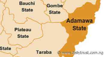 In the name of peace in Adamawa - Daily Trust