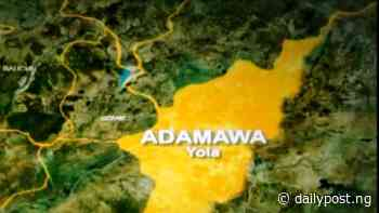 Adamawa approves N18bn for flyovers, roads - Daily Post Nigeria