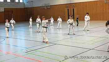 Allersberger Taekwondo-Kämpfer zurück im Training - donaukurier.de
