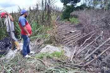 Cojedes | Residentes de Tinaquillo reportan fenómeno geológico en zona rural - El Pitazo