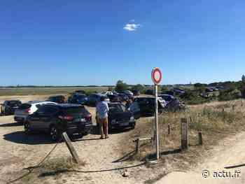 La Turballe : l'espace naturel protégé de Pen Bron saccagé par les automobilistes - actu.fr