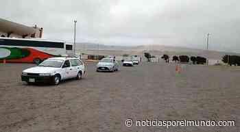 ▷ Moquegua: Taxistas reciben permisos para reiniciar servicio en Ilo | lrsd | Sociedad - Noticias Peru - Noticias por el Mundo