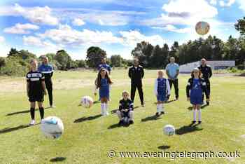 Dundee sports club 'anxious' to start work on new 3G football pitch - Evening Telegraph - Evening Telegraph