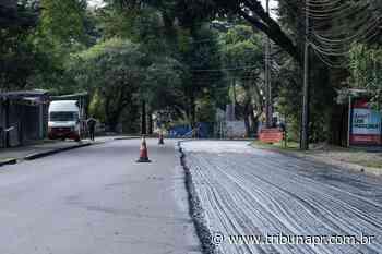 Trecho da rua Mateus Leme e entorno recebem revitalização. Veja o que muda - Tribuna do Paraná