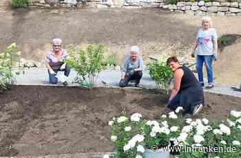 In Nurn und Steinwiesen entstehen mit Hilfe der Bürger Blumenwiesen - inFranken.de