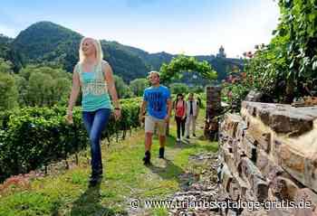 Reiseführer des Ferienlandes Cochem erschienen!   Cochem, Mosel/Saar - Urlaubskataloge-gratis
