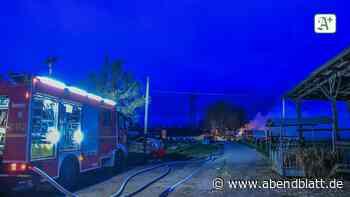 Großbrand bei Elmshorn: Reetdachhäuser in Flammen - Hamburger Abendblatt