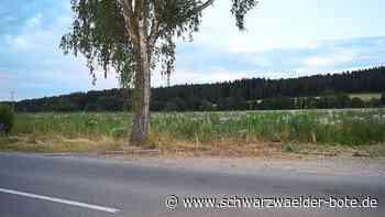 Niedereschach: Der Grunderwerb ist bereits vollzogen - Niedereschach - Schwarzwälder Bote