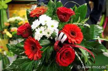 Einbruch in Blumenladen: Diebe entkommen mit Pflanzen - Märkische Onlinezeitung