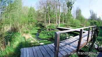Programme du jour : Balade à pied à Meung-sur-Loire ! - France Bleu