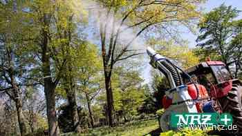 Isselburg: Raupen-Bekämpfung vom Boden aus zeigt Wirkung - NRZ